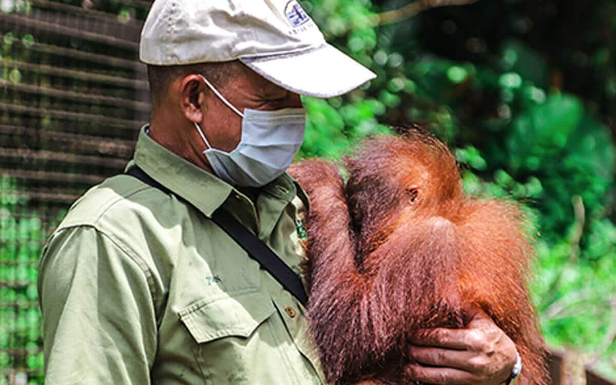 Mitsubishi CSR Orang Utan Wildlife Conversation Sarawak | Mitsubishi Motors Malaysia