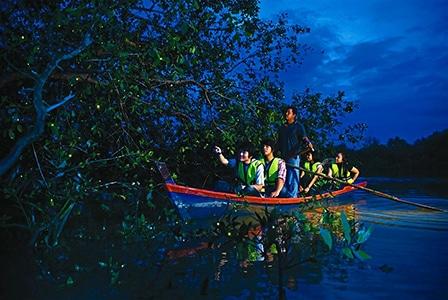 Malaysia Holiday Destination – Firefly Park in Kuala Selangor | Mitsubishi Motors Malaysia