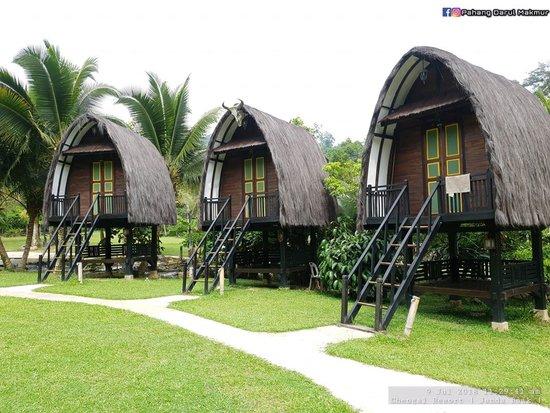 Family Glamping: Chengal Hill Retreat in Bentung, Pahang | Mitsubishi Motors Malaysia