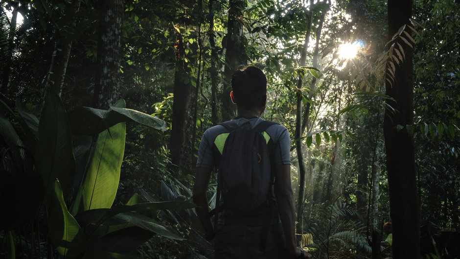 Endau-Rompin National Park | Mitsubishi Motors Malaysia