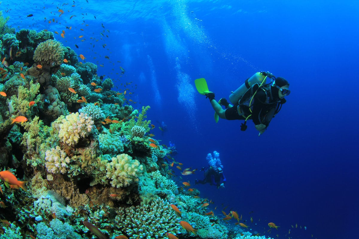 Outdoor Activities Malaysia – Scuba Diving | Mitsubishi Motors Malaysia
