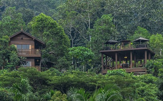 Family Glamping: Templer Park Rainforest Retreat in Rawang, Selangor | Mitsubishi Motors Malaysia